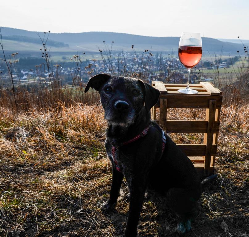 Das Weingut
