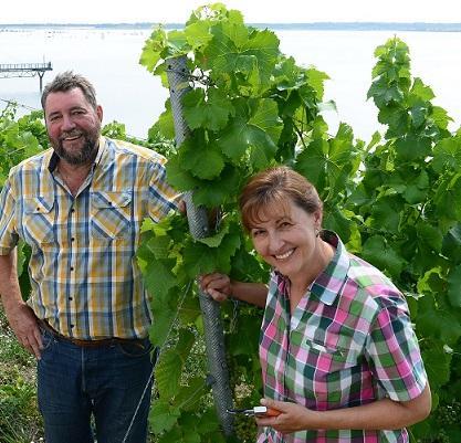 Das Weingut WeinWobar vom Großräschener See