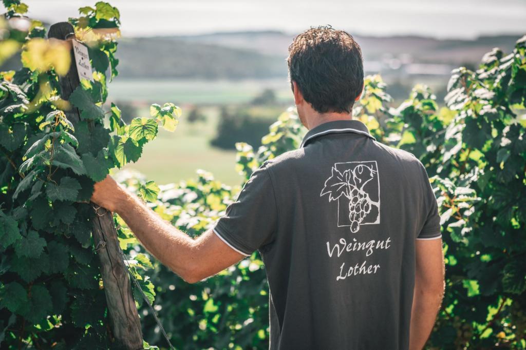 Das Weingut Weingut Lother